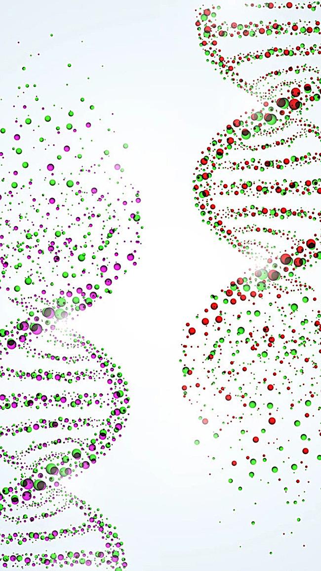多彩颗粒状dna结构图h5背景元素