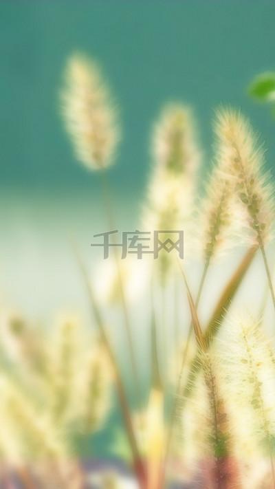 小清新狗尾草PS源文件H5背景素材