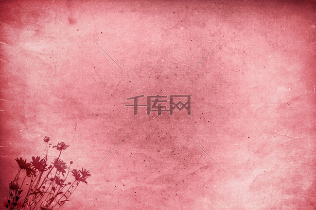 血红色雏菊背景素材