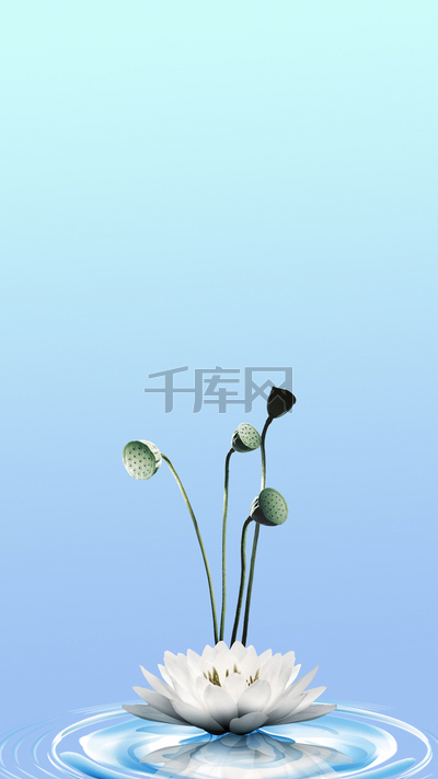 蓝色淡雅端午节莲花H5分层背景