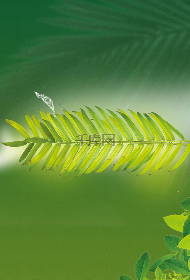 绿色绿叶舒适聚会派对背景