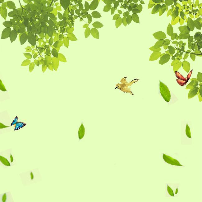 清新绿色树叶飘落春季海报鸟儿蝴蝶飞舞