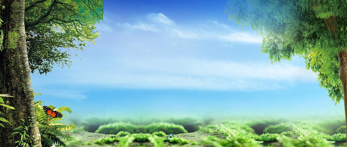 01m 尺寸:1920*816 90设计提供夏日森林出游蓝天天空背景设计素材下载