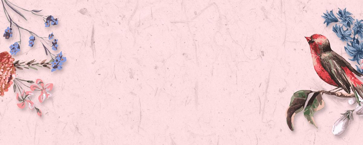 淘宝手绘粉色海报背景