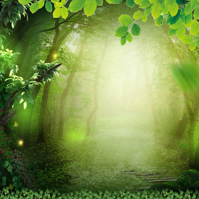 图片 > 【psd】 唯美绿色森林简约背景  分类:艺术字体 类目:其他