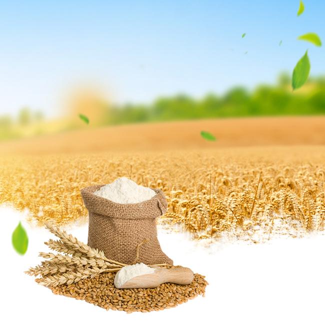 金色麦田燕麦片食品促销psd分层主图背景psd素材-90