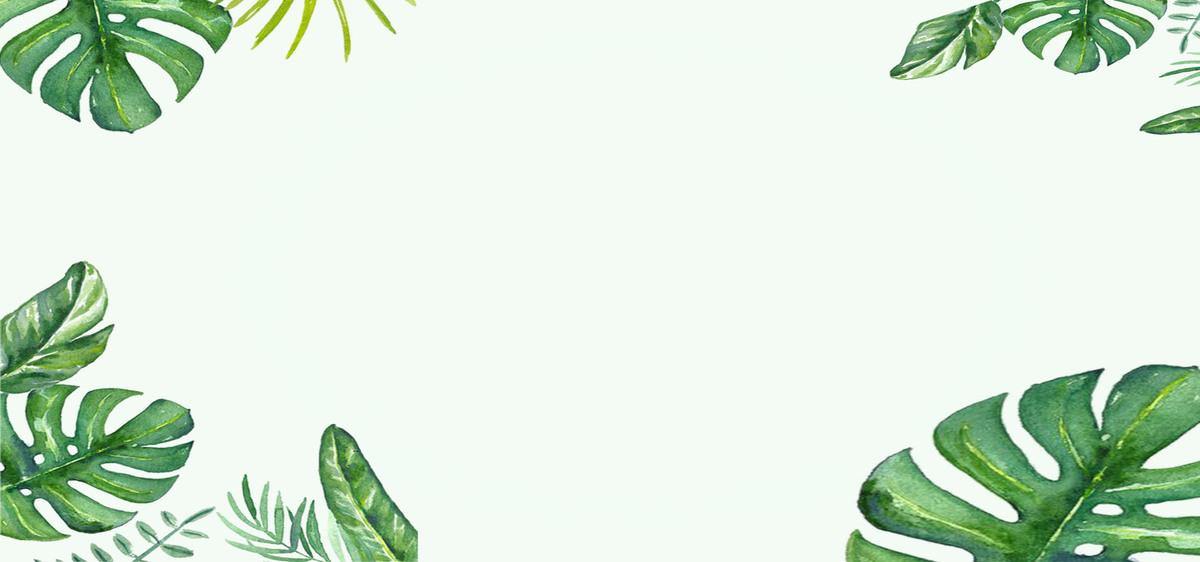 夏季小清新绿色电商海报背景图片