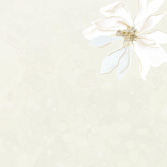 简约淡雅手绘花朵化妆品主图