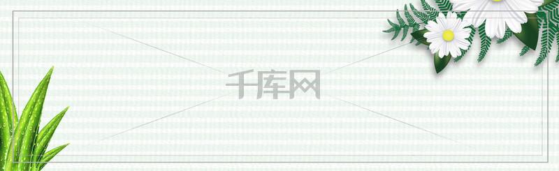 淘宝植物初秋上新梦幻banner