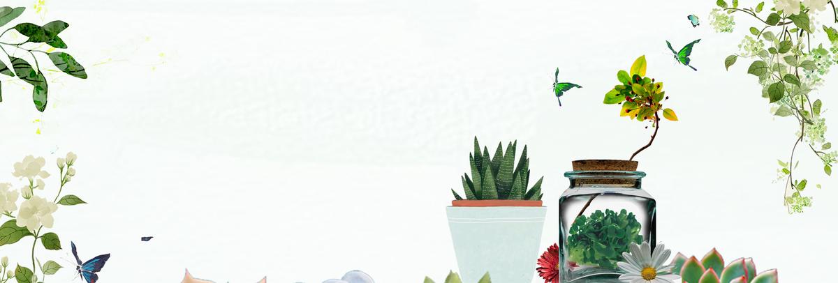 淡绿色小清新花朵多肉绿色植物banner