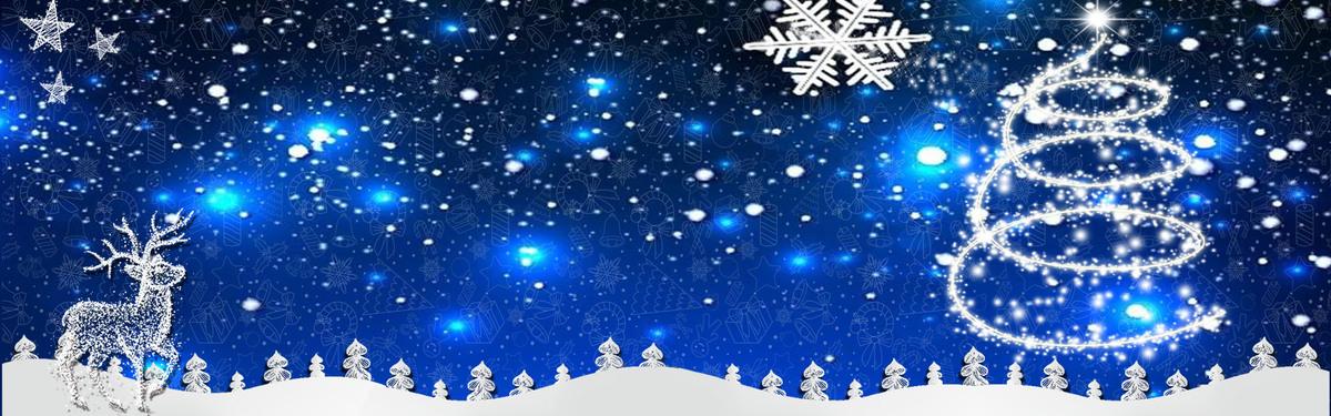 圣诞节麋鹿星空banner