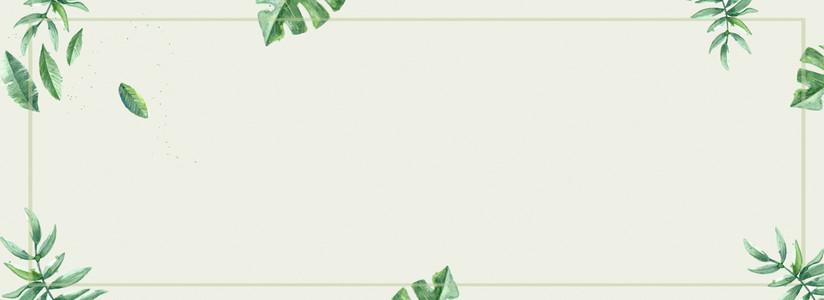 绿色简洁文艺小清新背景图片免费下载_广告背