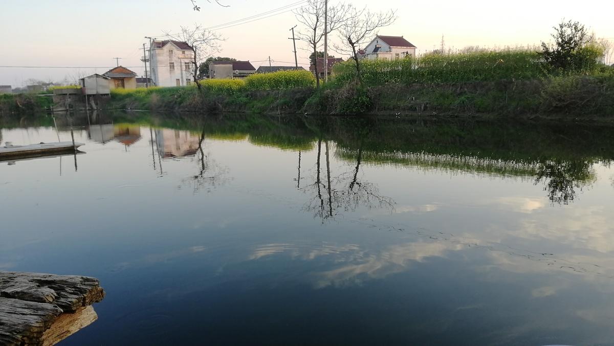 乡村池塘边自然风光图片