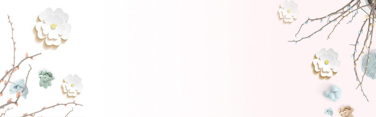 手绘中国风清新白色花卉banner背景