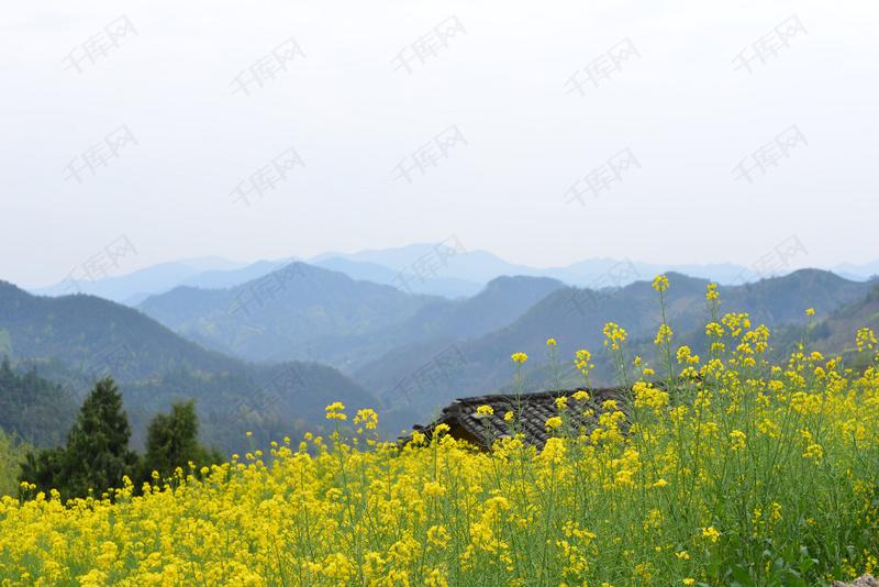 自然风景天然风景摄影图1背景图片免费下载_高清摄影