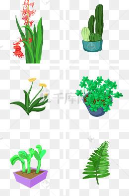 可爱小清新绿色植物
