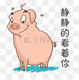 【美好猪图片表情】免费下载_搞笑猪表情表情搞笑我们致单纯qq素材包小的图片
