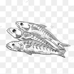 海简笔画图片 海简笔画素材图片 海简笔画素材图片免费下载 千库网png