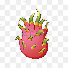 卡通新鲜的火龙果图片