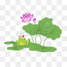 卡通荷叶荷花青蛙主题卡通图片