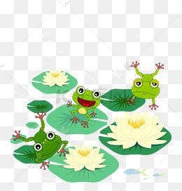 手绘在荷叶上跳舞的青蛙矢量图图片