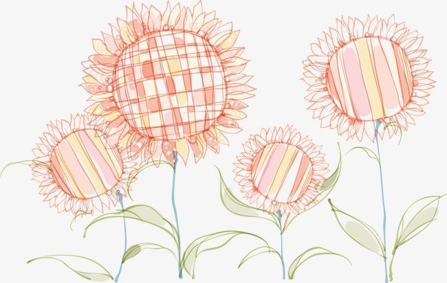 卡通手绘向日葵太阳花
