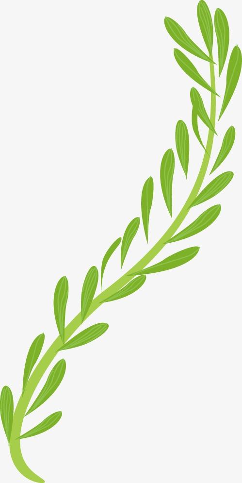 设计元素 背景素材 其他 > 树木树叶  [版权图片] 找相似下一张 >