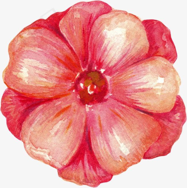 手绘花卉花卉手绘手绘花卉飘落牡丹月季花玫瑰花花卉设计唯美花卉水彩花卉水墨花卉