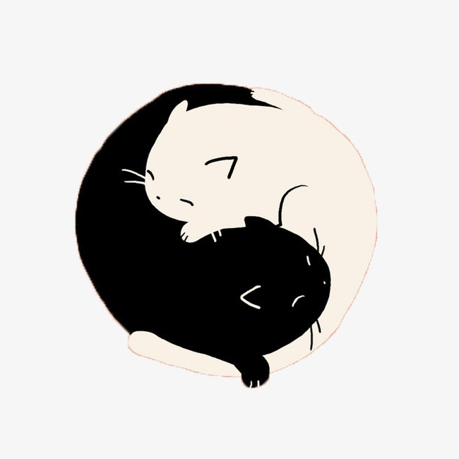 手绘黑白猫