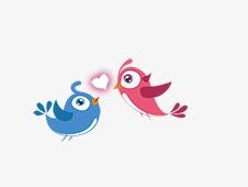 情人节小鸟素材