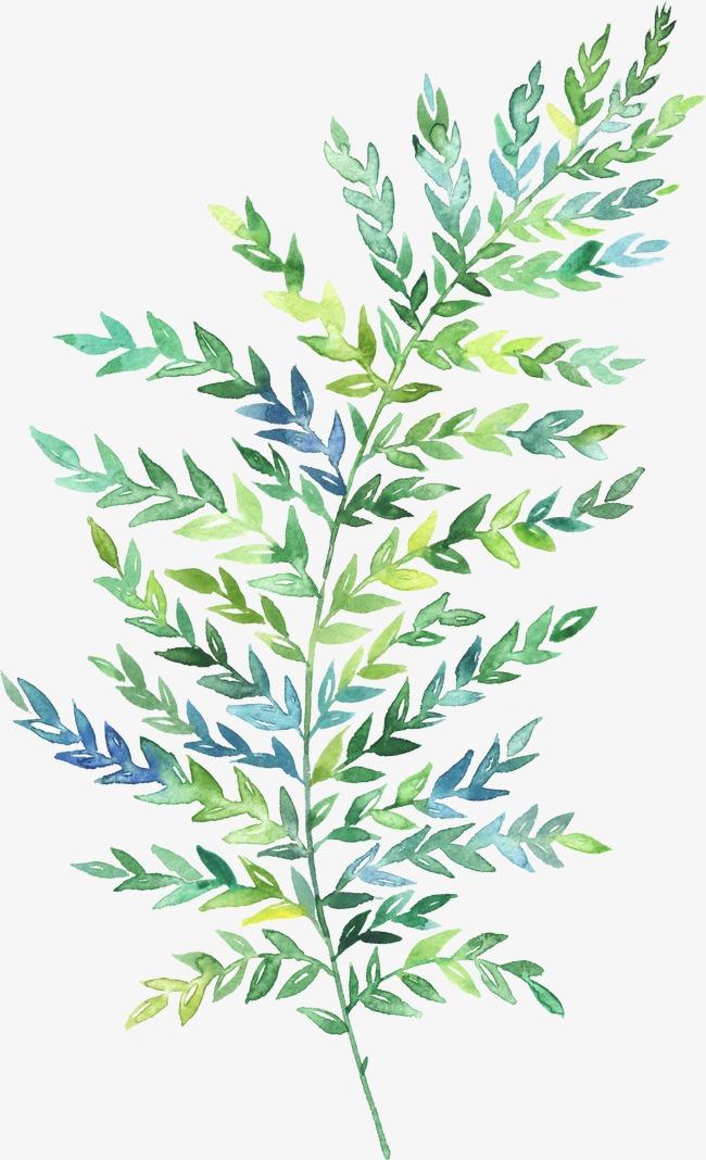 Green Ring Leaf Png