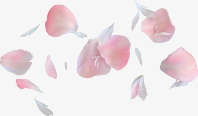 椭圆花瓣碎花瓣素材图片免费下载_高清漂浮素材png_千