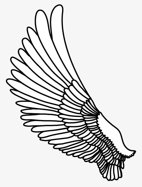 翅膀卡通 卡通手绘翅膀
