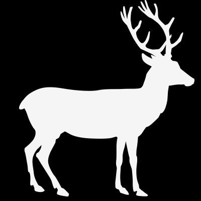 麋鹿手绘图黑白线条