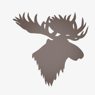 设计元素 其他 装饰图案 > 鹿头  [版权图片] 找相似下一张 > 举报