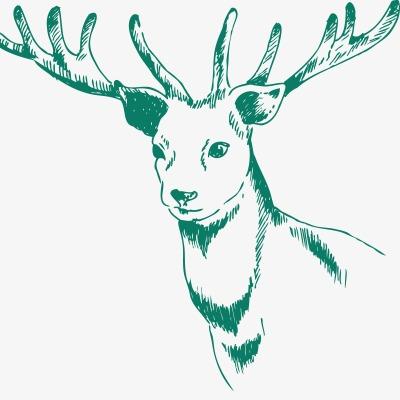 设计元素 其他 装饰图案 > 素描鹿  [版权图片] 找相似下一张 > 举报