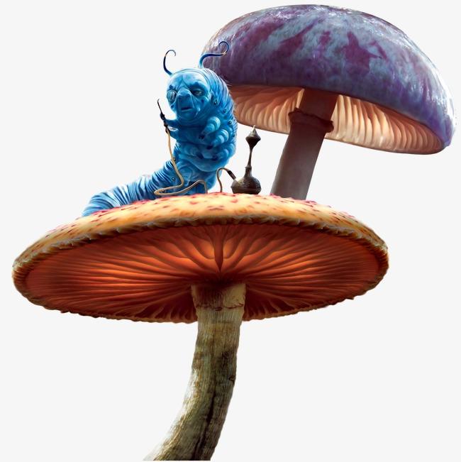 魔幻背景梦幻图片 梦幻蘑菇素材图片免费下载_高清不