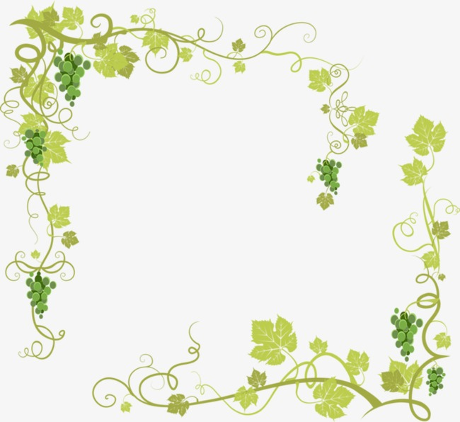 葡萄藤 葡萄 藤蔓 卡通 绿色 叶子 手绘 花藤 绿叶 缠绕的花藤 泼墨