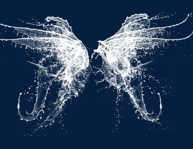 素材 picsart 翅膀