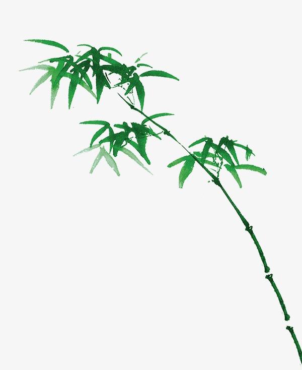 手绘竹子图案模板下载(图片编号:14592412)