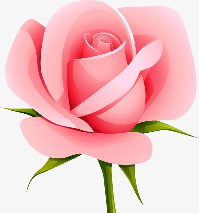 卡通花卉玫瑰花