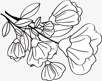 简笔画 设计 矢量 矢量图 手绘 素材 线稿 356_284