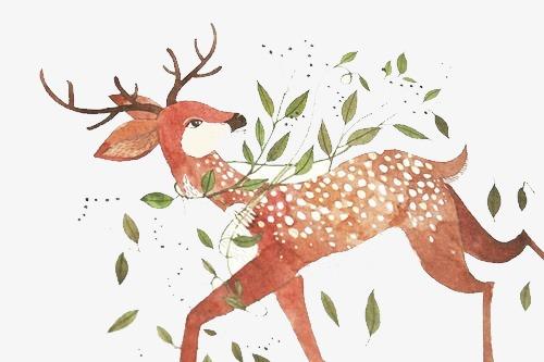 手绘图片森林系素材 梅花鹿