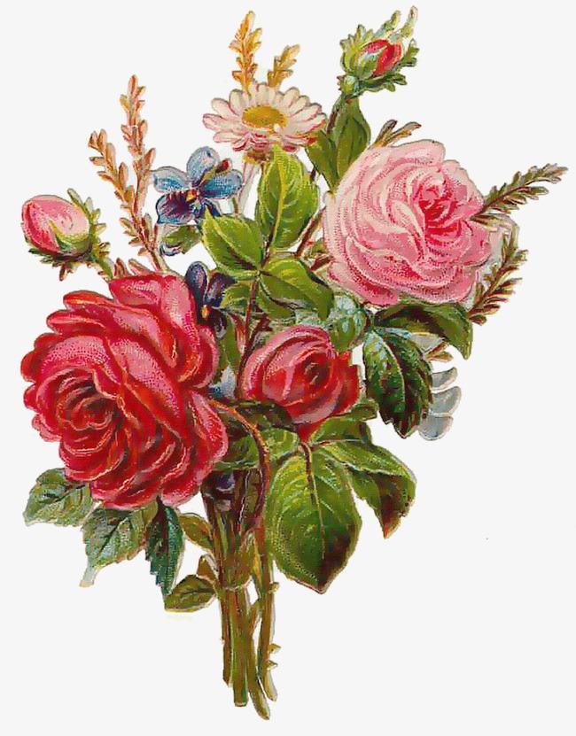 手绘花朵图片卡通鲜花图片 花束