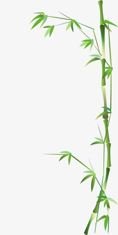 卡通卡通图片 清新竹子