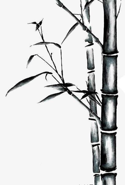 竹叶 卡通图片 手绘竹子图片 竹叶素描 卡通竹叶图片 手绘 竹子 中国