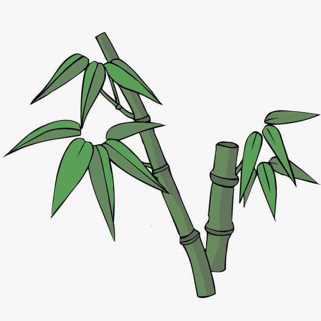 竹子竹子图标