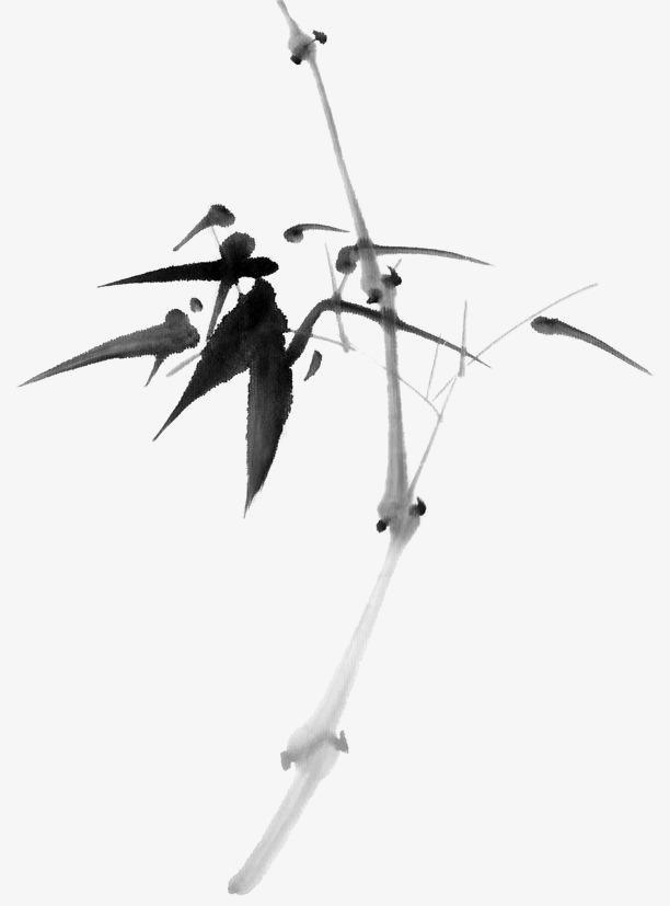 竹子矢量图手绘竹叶图片 中国画竹子