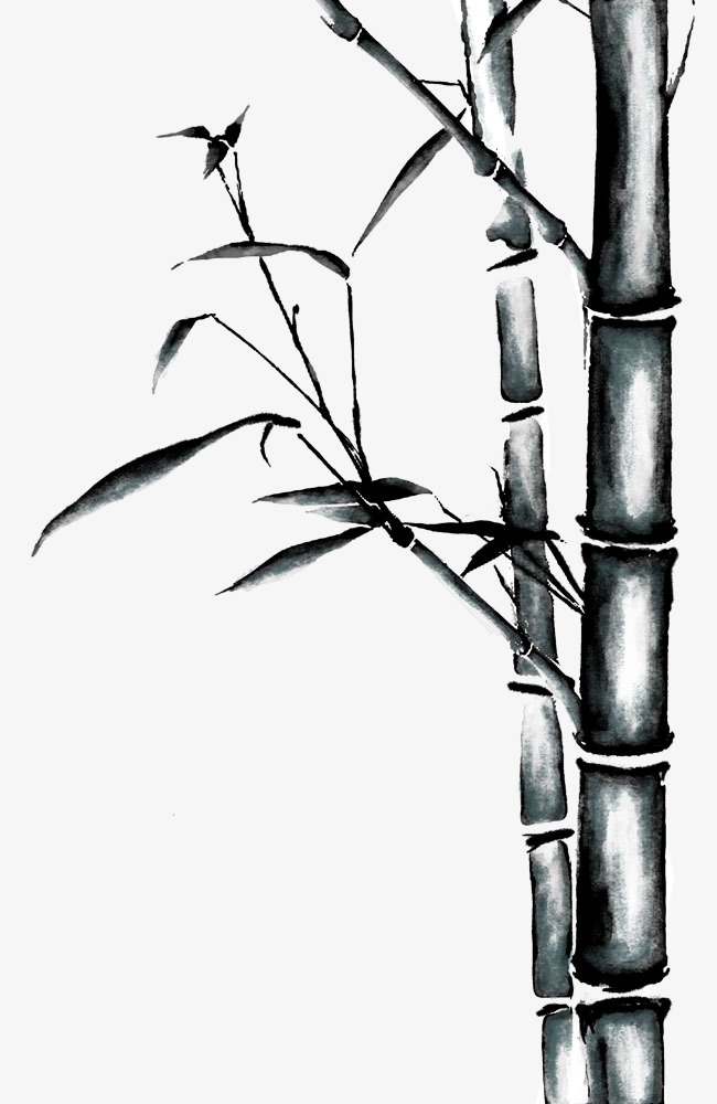 竹叶图片手绘竹子图片 卡通手绘竹子png素材-90设计
