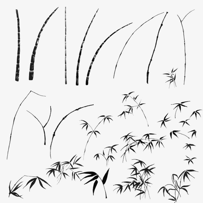 手绘竹子图片竹子素描 卡通手绘竹子枝条